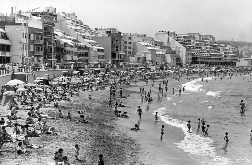 Strandliv på Las Palmas, Gran Canaria. Foto.