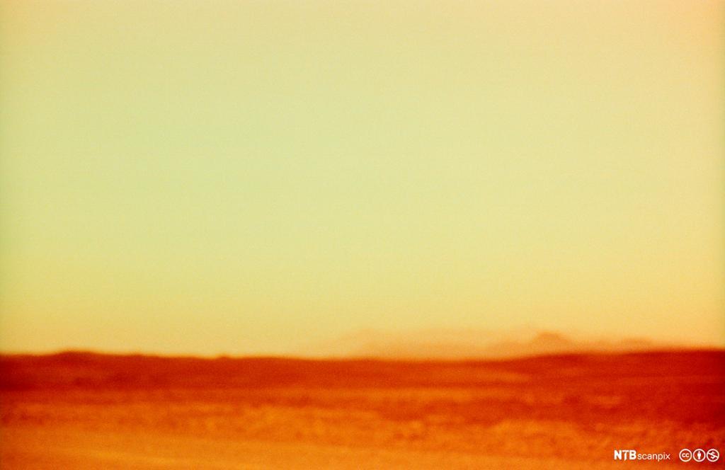 Varmt ørkenlandskap. Foto.