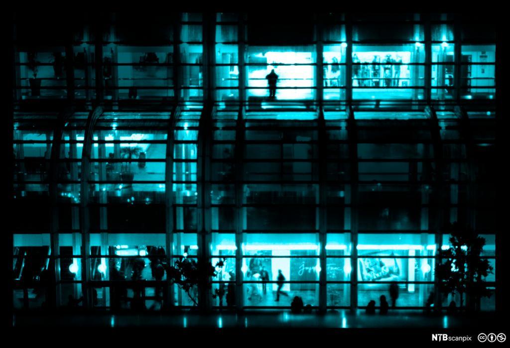 Kontorbygning med lys i vinduer. Foto.