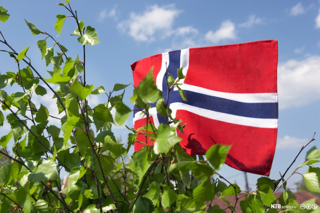 Det norske flagget. Foto.
