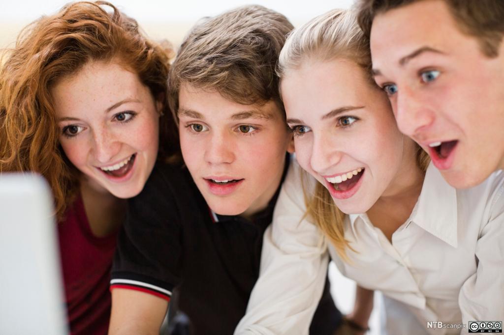 Fire ungdommer ser begeistret på PC-skjerm. Foto.