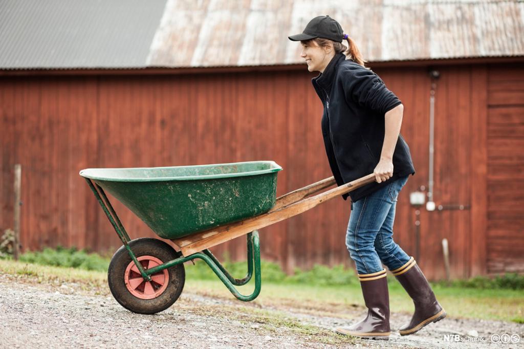 Et fotografi av en kvinnelig bonde som triller en trillebår.
