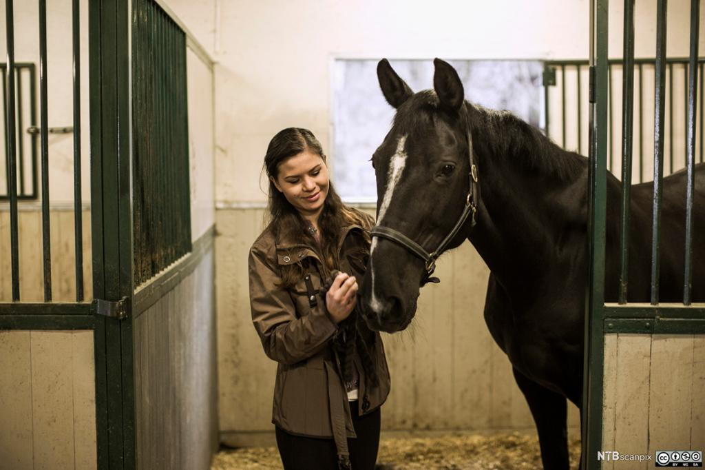 Jente og en hest i stallen. Foto.