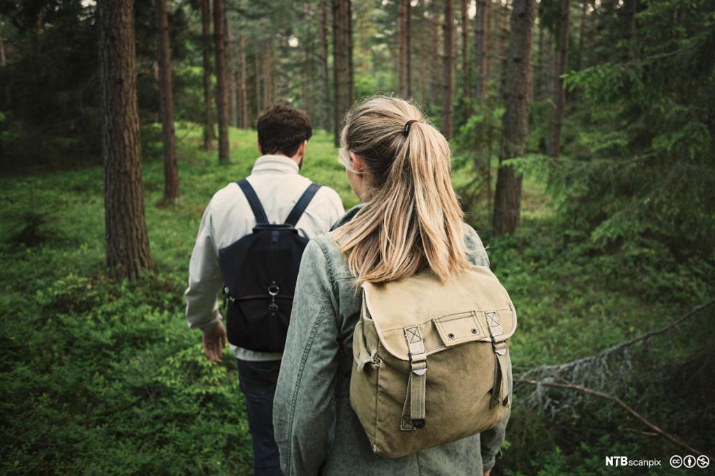To ungdommer på skogstur. Foto.