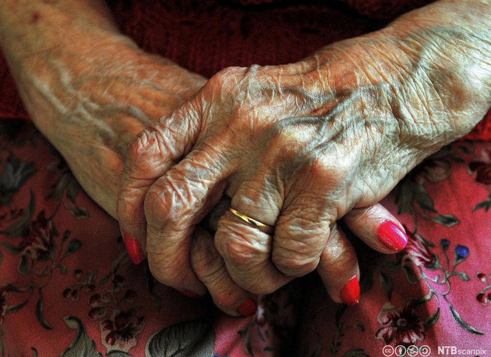 Gamle hender. Foto.