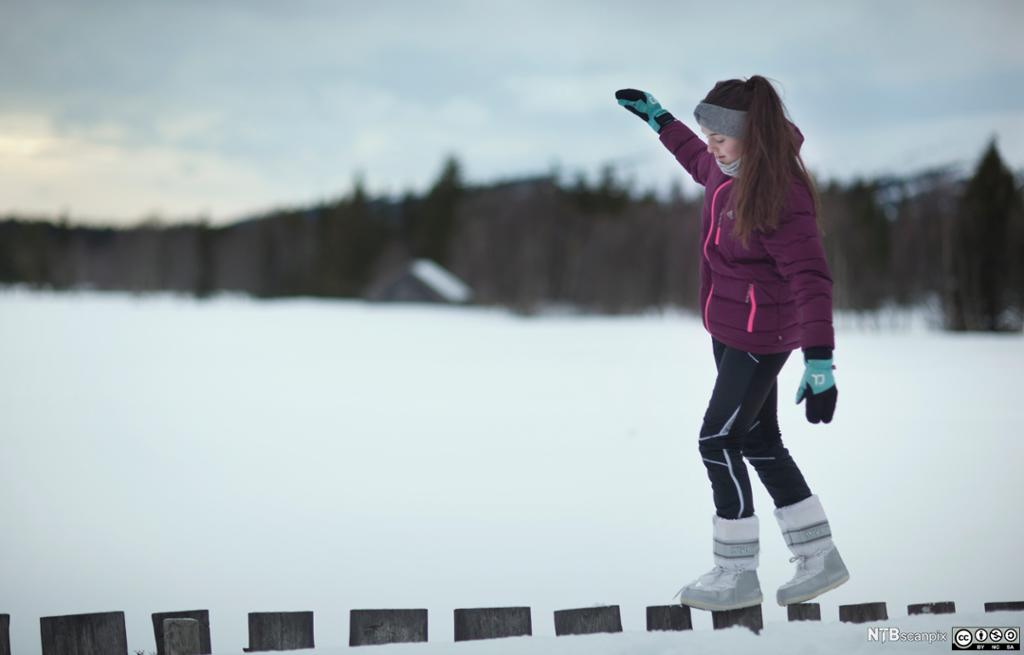 Jente som balanserer på nedsnødd gjerde. Foto.