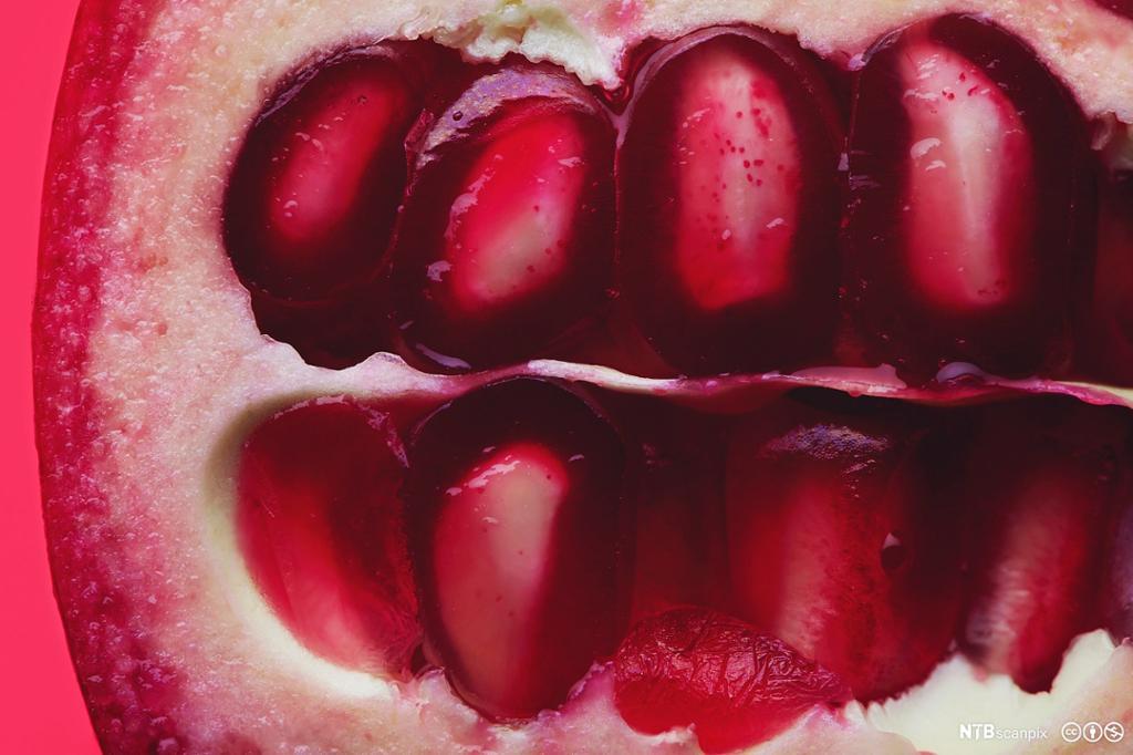 Nærbilde av innsiden av et granateple. Foto.