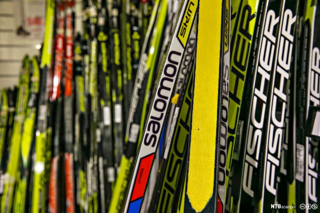 Utvalg av ski i sportsbutikk. Foto.
