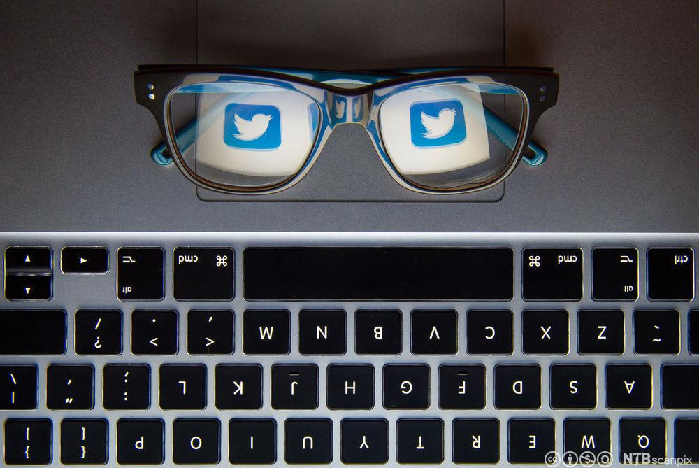 Twitter-logoen reflekteres i brilleglass. Foto.