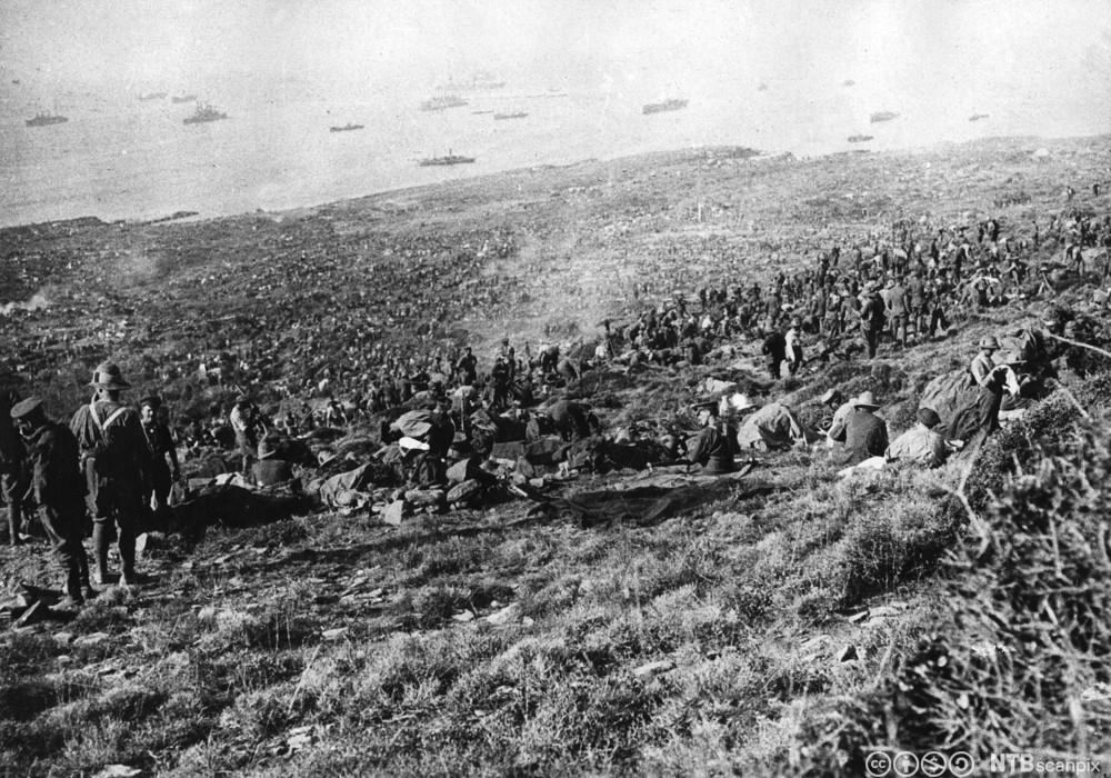 Britiske tropper landsettes i Suvlabukta på Gallipoli-halvøya i august 1915. Foto.