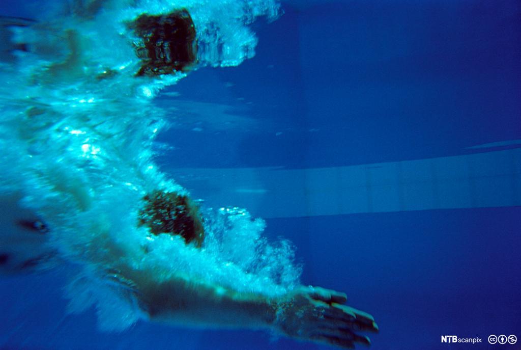 Mann som stuper ned under vann. Foto.