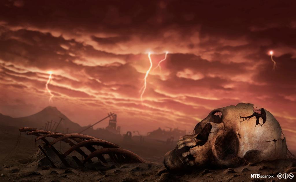 Landskap der alt liv er dødt. Hodeskalle i forgrunnen. Illustrasjon.
