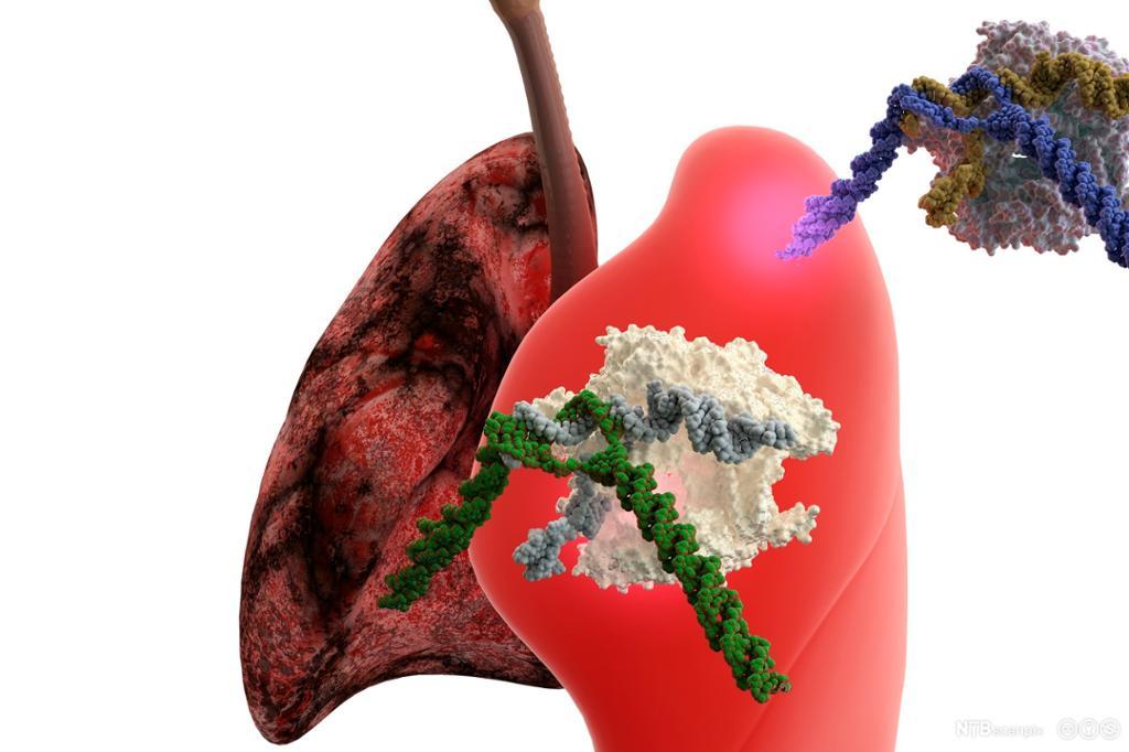 Lunge med kreft og enzym med DNA. Illustrasjon.