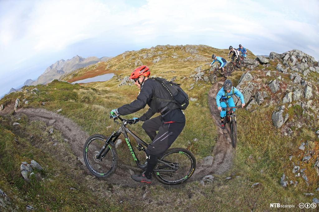 En gruppe på sykkeltur i fjellet. Foto.