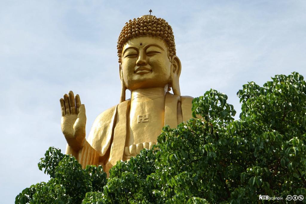 Gullfarget statue. Foto.