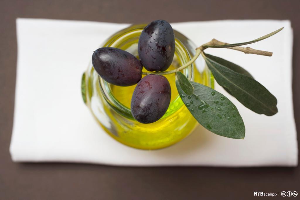 Kvist med svarte oliven ligger oppå glass med olivenolje. Foto.