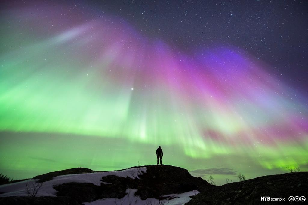 Silhuett av person som ser på nordlys. Foto.
