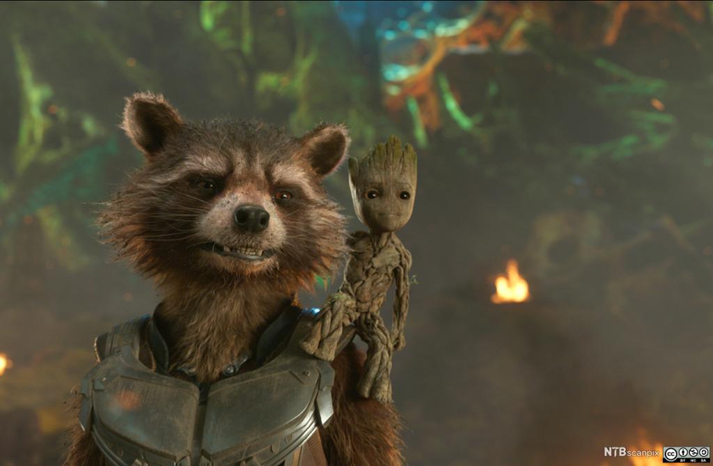 Rocket fra Marvels Guardians Of The Galaxy Vol. 2. Filmfoto.