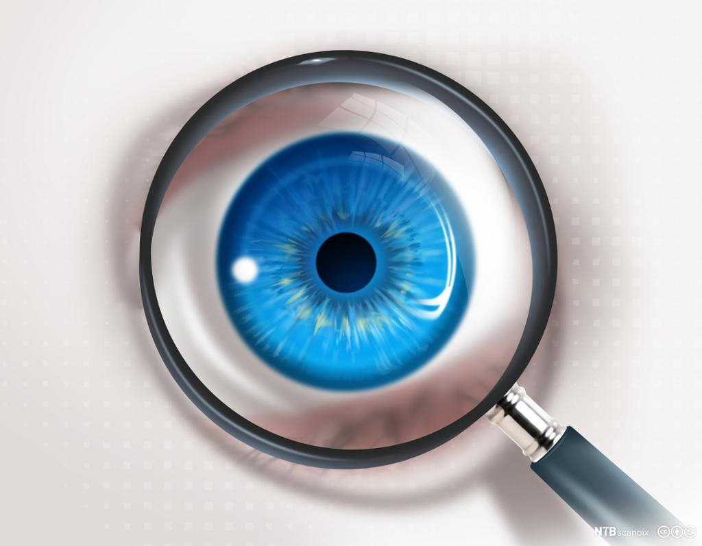 Ultranærbilde av et blått øye bak et forstørrelsesglass. Foto.