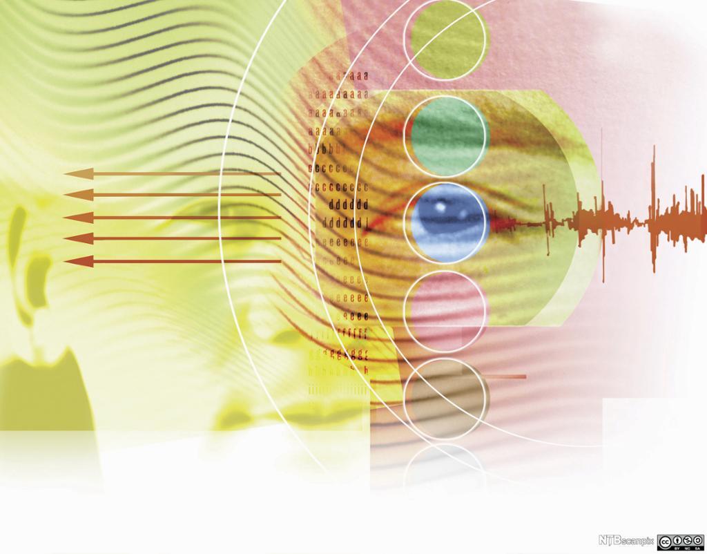 Sirkler, bokstaver og lydbølger over et ansikt. Illustrasjon.