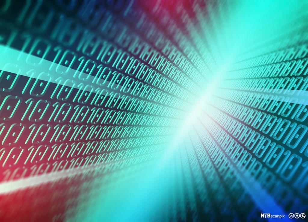 Dataskjerm med dataspråk. Foto.