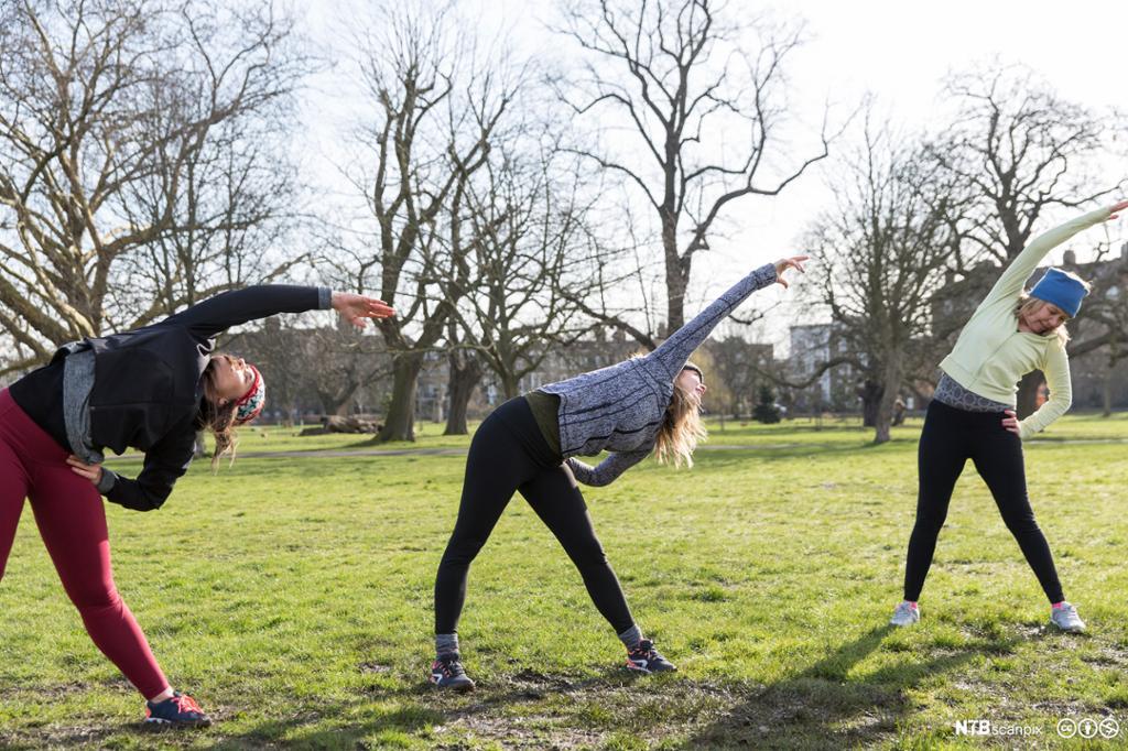 Jenter tøyer ut i parken. Foto.