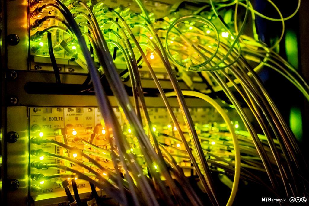 Mange ledninger koblet til datasentral. foto.