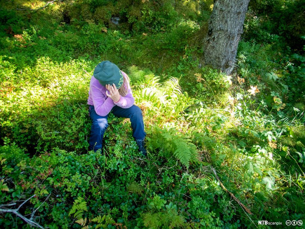 Unge som sitter på en trestubb i et skogsområde og støtter ansiktet i hendene. Foto.
