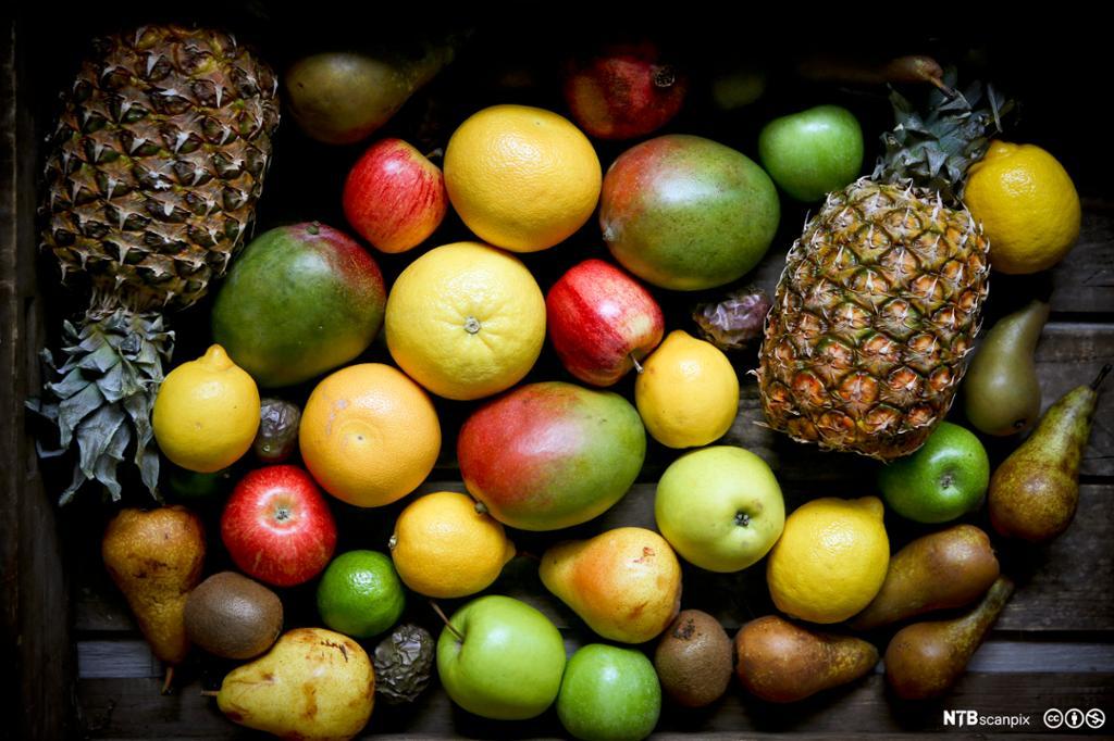 Ulike typer frukt ligger utover et bord. Foto.