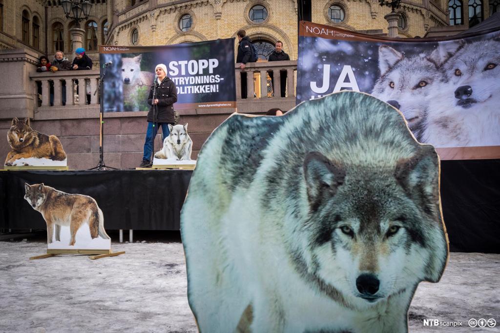 I bakgrunnen NOAH-leder Siri Marthinsen som holder en appell. I forgrunnen en stor ulvefigur i papp. Foto.