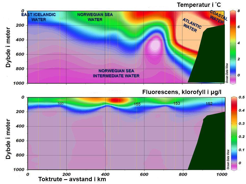 Plansje over produksjon og temperatur i havet. Teikning.