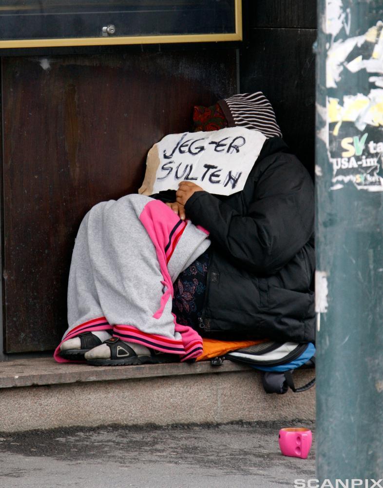 Ei dame held  ein plakat med teksten: Jeg er sulten. Foto.