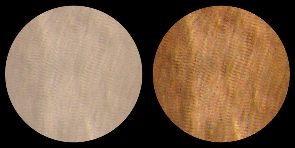 To mikroskopbilder av tverrstripet muskulatur.