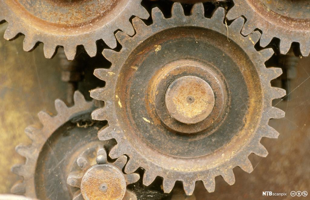 Rustent tannhjul. Foto.