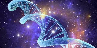 Bit av et DNA-molekyl som ser ut som en kveilet taustige. Illustrasjon