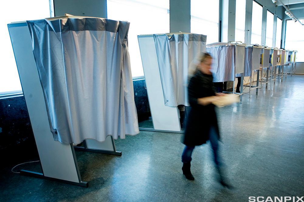 stemme ved valget