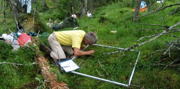 En mann registrerer planter som vokser innen for en rute på en kvadratmeter.