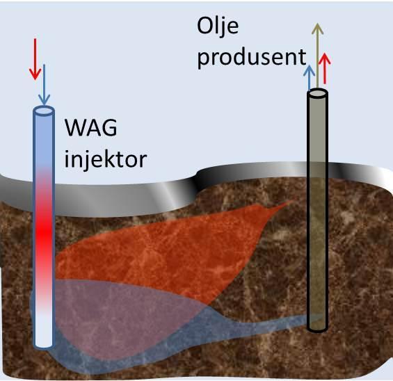 WAG injektor. Illustrasjon.