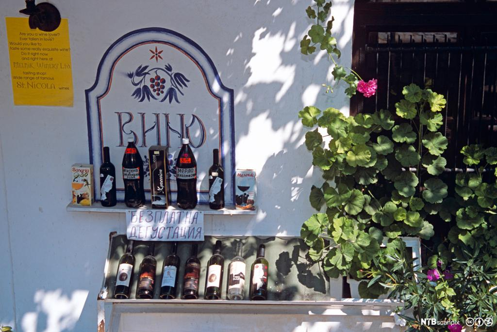 Utstilling av vinflasker utenfor vingård.foto.